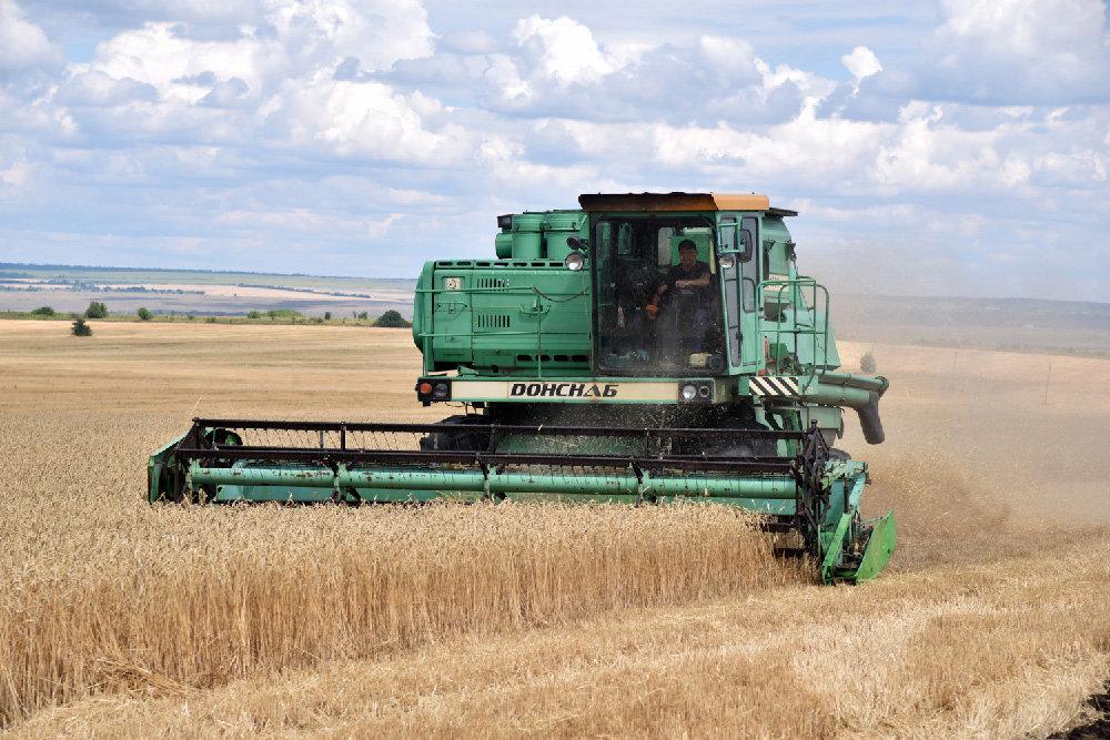 Для развития сельского хозяйства власти ДНР должны минимизировать в агросфере бюрократию, фото-1