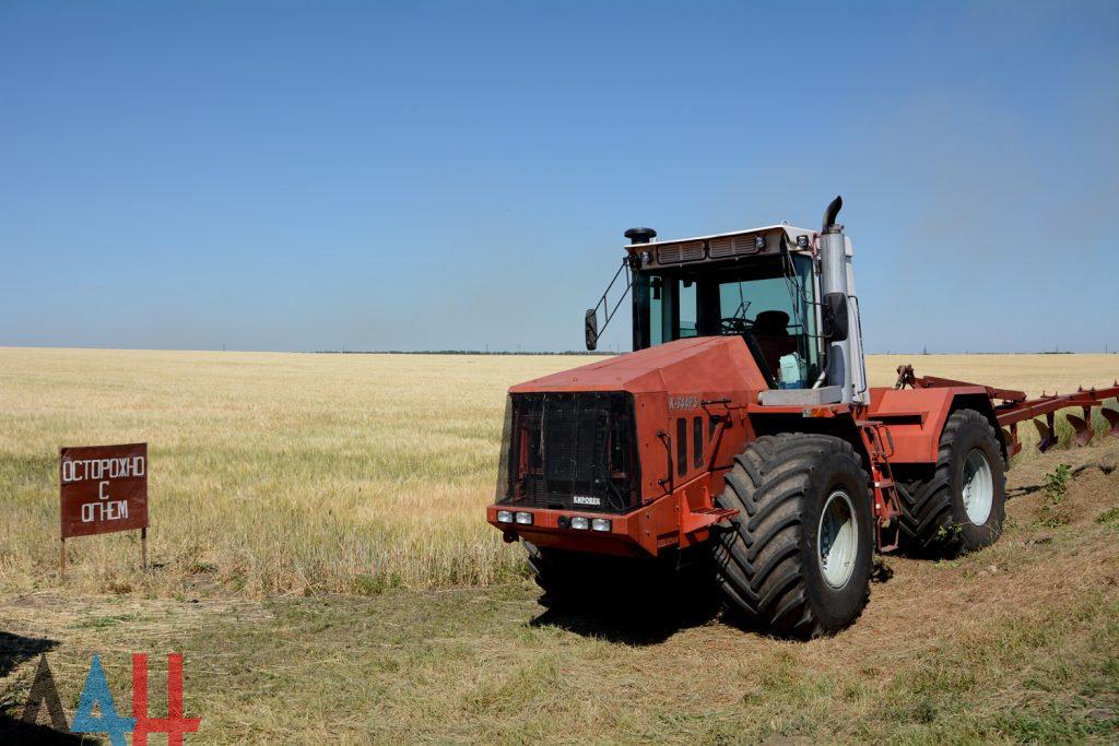Десятки тысяч гектаров озимой пшеницей и тритикале засеяли аграрии ДНР , фото-1