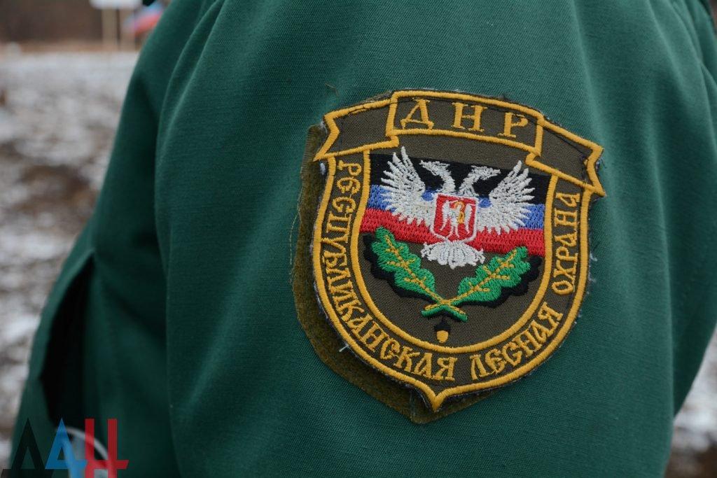 В ДНР с начала года отстреляно 8 волков и 175 лис, фото-1